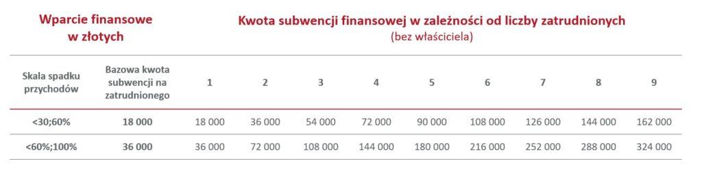 Tarcza Finansowa PFR 2.0 mikrofirma